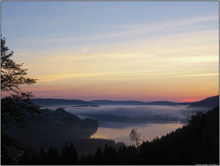 Titisee im Morgennebel